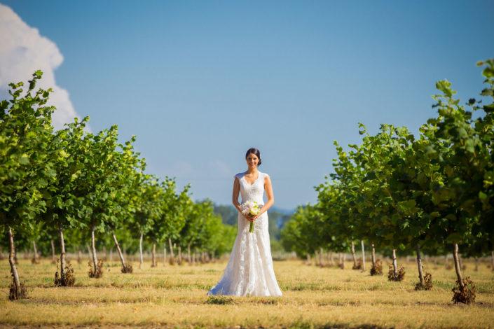 0038_6908-705x470 Wedding